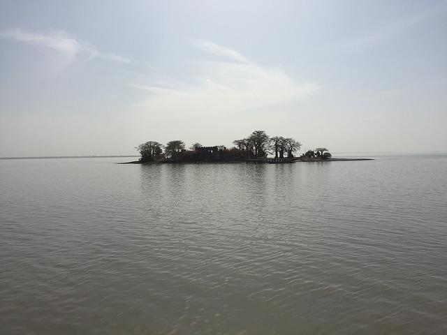 クンタ・キンテ島の画像 p1_14