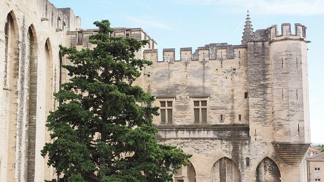 アヴィニョン歴史地区:法王庁宮殿、司教関連建造物群及びアヴィニョン橋の画像1
