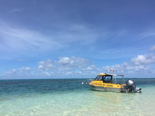 ニューカレドニアの珊瑚礁:環礁の多様性と関連する生態系の画像3