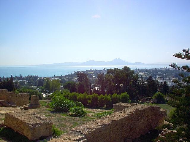 カルタゴ遺跡の画像3