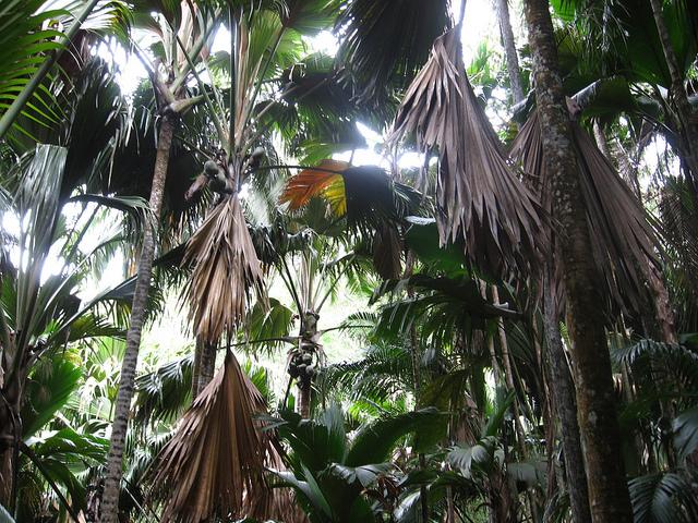 メ渓谷自然保護区の画像1