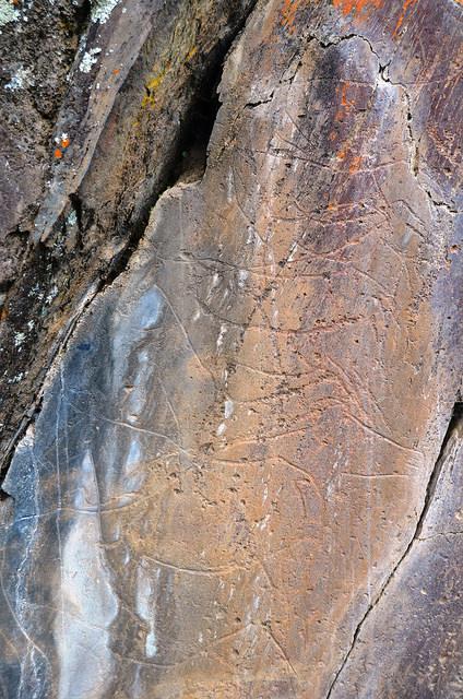 コア渓谷とシエガ・ヴェルデの先史時代のロックアート遺跡群の画像1