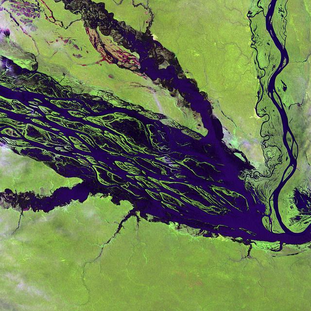 中央アマゾン自然保護区群の画像1