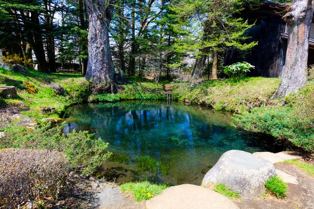 忍野八海:底抜池の画像1