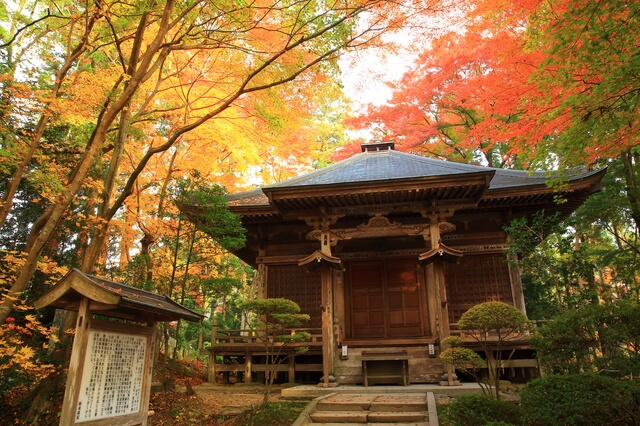 平泉-仏国土(浄土)を表す建築・庭園及び考古学的遺跡群-の画像1