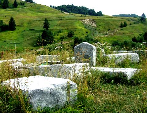 中世墓碑ステチュツィの墓所群の画像1