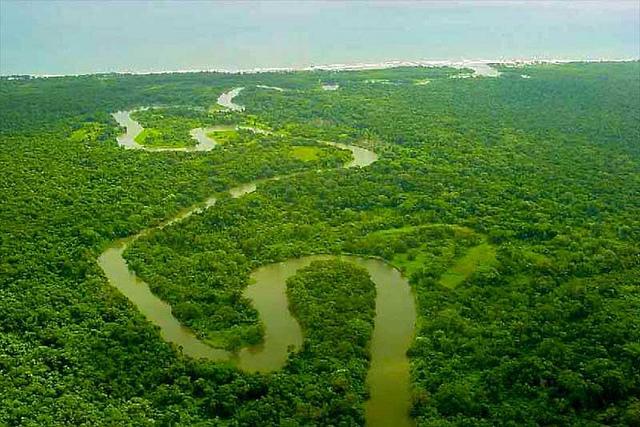 リオ・プラタノ生物圏保護区の画像1
