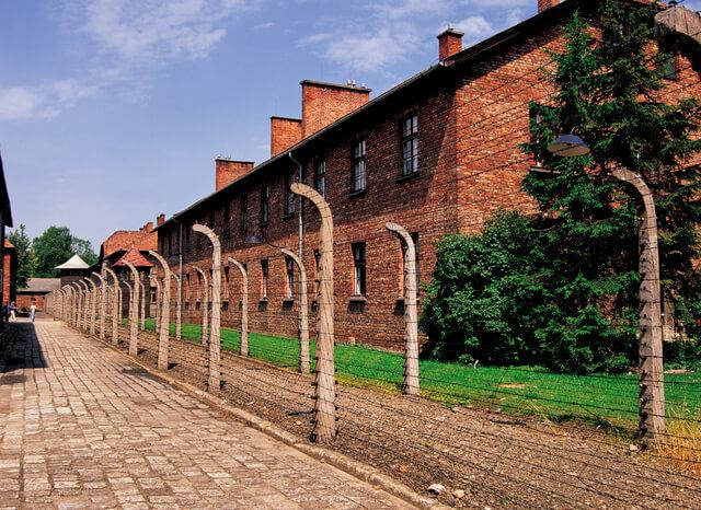 アウシュヴィッツ・ビルケナウ ナチスドイツの強制絶滅収容所(1940-1945)の画像29