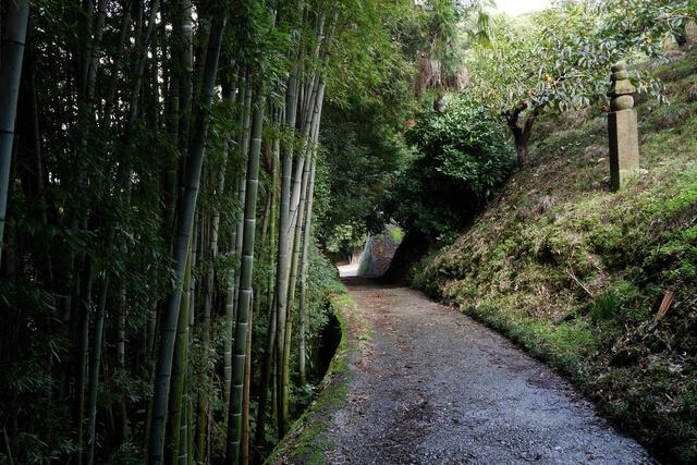 高野参詣道の画像1