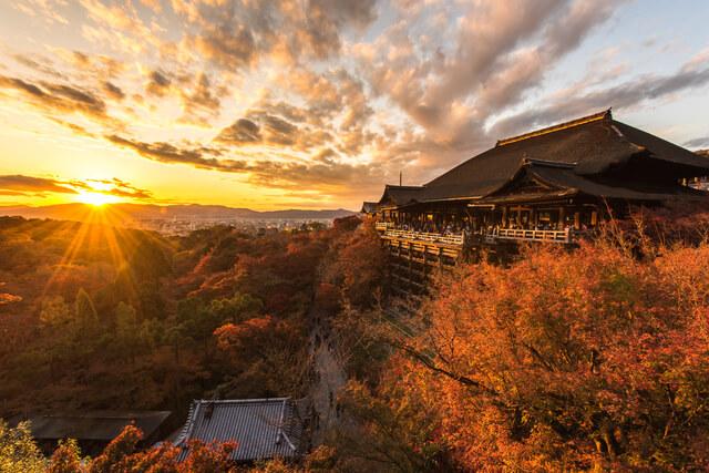 古都京都の文化財の画像23