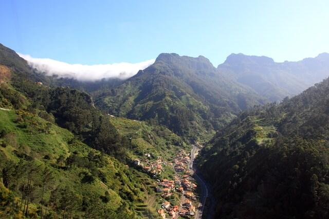 マデイラ島の照葉樹林の画像1