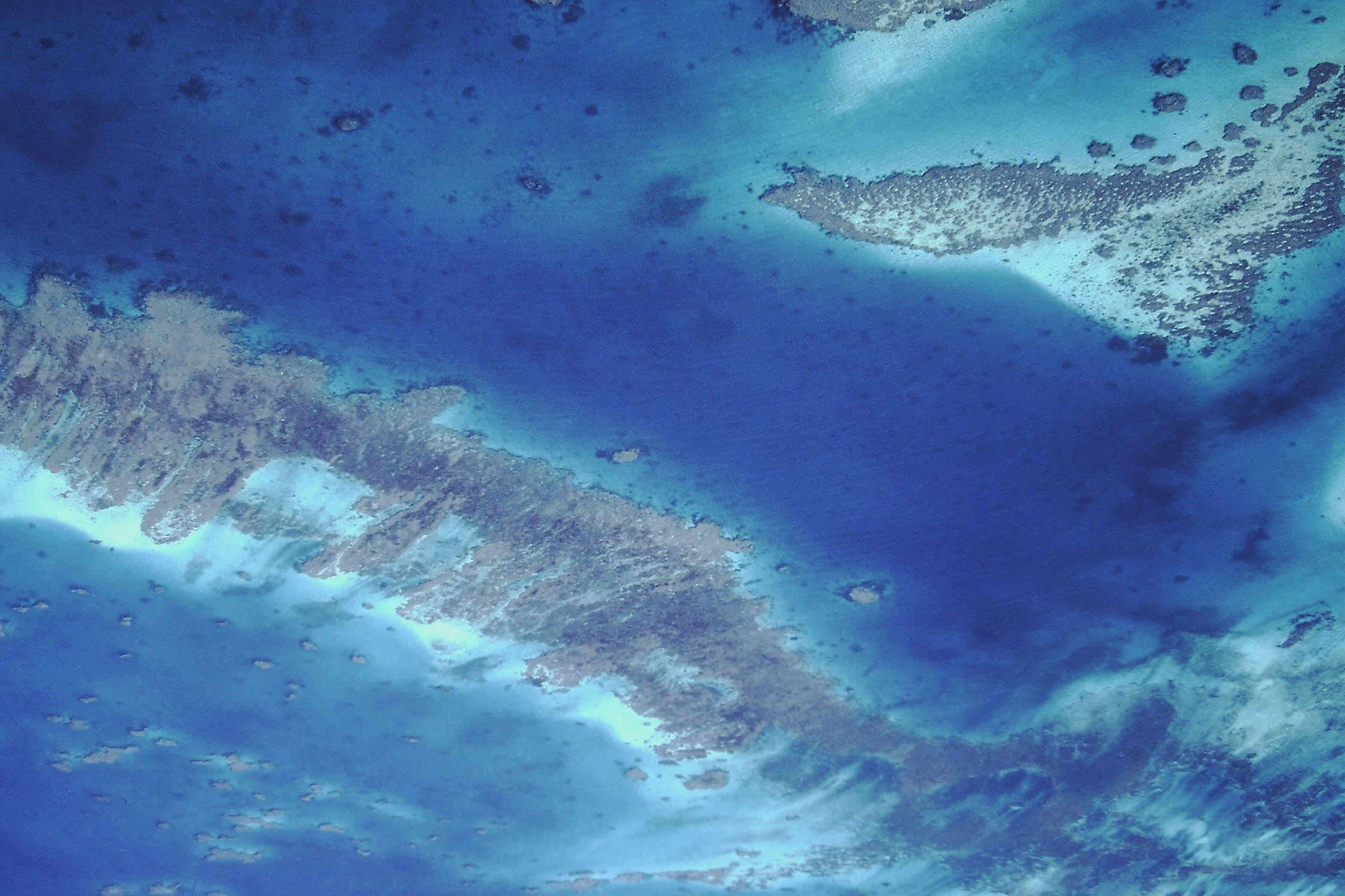 ニューカレドニアの珊瑚礁:環礁の多様性と関連する生態系の画像1