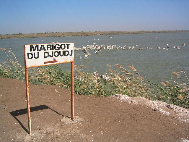 ジュッジ国立鳥類保護区の画像4