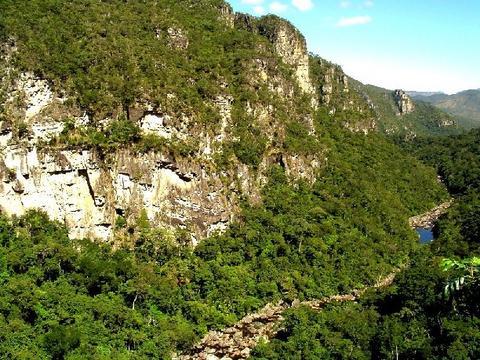 セラード保護地域群:ヴェアデイロス平原国立公園とエマス国立公園 の画像2