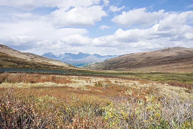 ウコク高原の保護区 | 世界遺産...