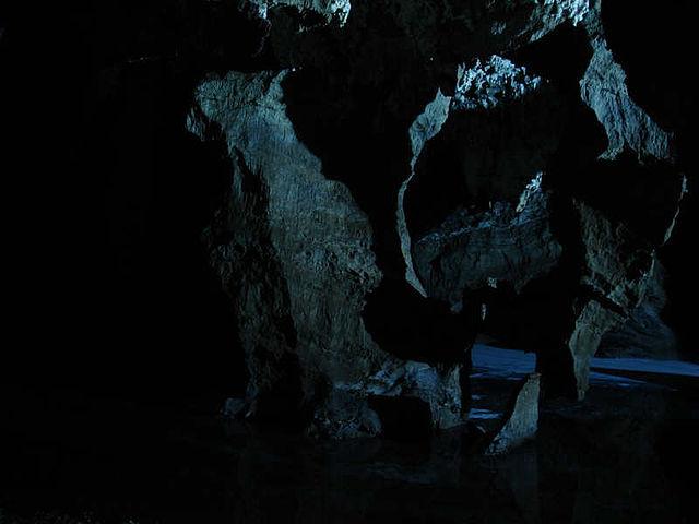 南アフリカ人類化石遺跡群の画像1
