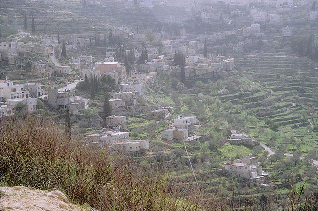 パレスチナ:オリーブとワインの地-エルサレム南部バティールの文化的景観の画像1