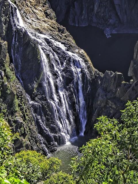 クインズランドの湿潤熱帯地域の画像29