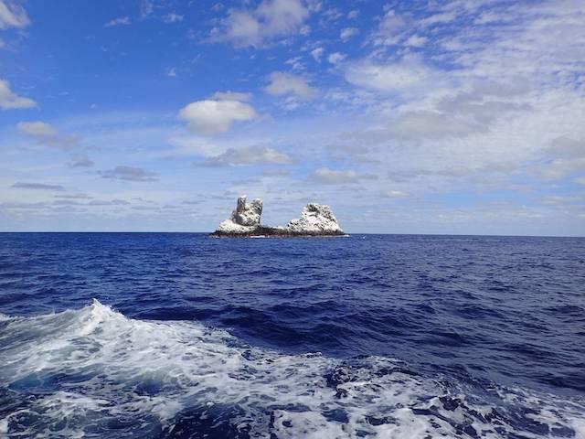 レビジャヒヘド諸島の画像18