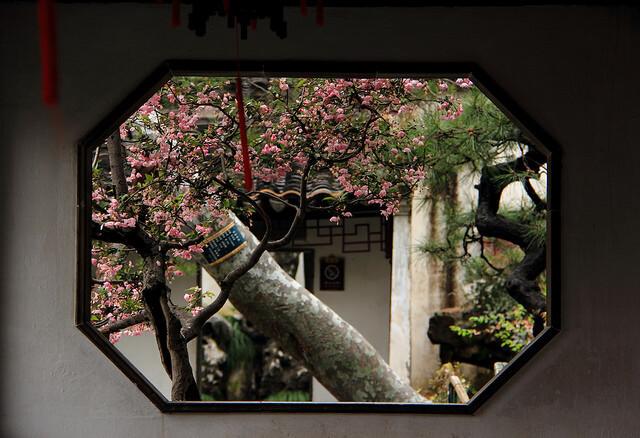蘇州古典園林の画像30