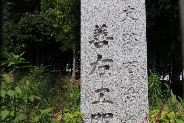 https://upload.si-p.net/img/1563652642_zenemonyamakofun_.JPG