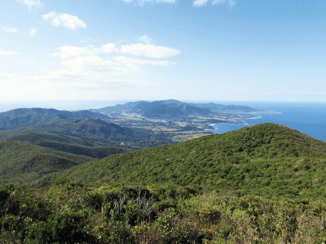奄美大島、徳之島、沖縄島北部及び西表島の画像7