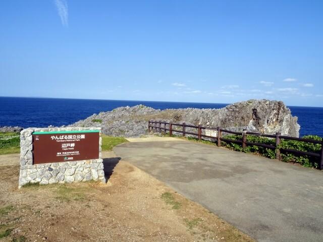 奄美大島、徳之島、沖縄島北部及び西表島の画像13