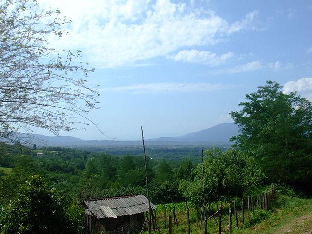 コルキスの雨林・湿地群の画像1