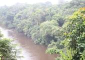 http://world-heritage.s3-website-ap-northeast-1.amazonaws.com/img/1532190442_Fluss_Dja_Somalomo.jpeg